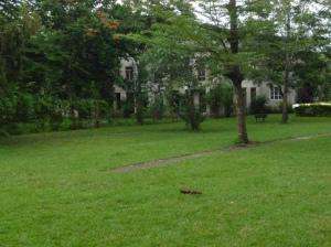 Arusha, Tanzania, OTA - Overland Travel Adventures www.ota-responsibletravel.com
